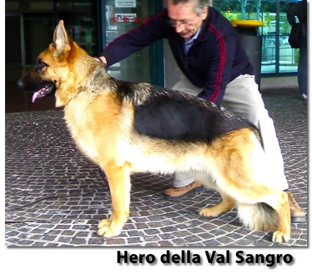 20130618-hero-della-val-sangro-a