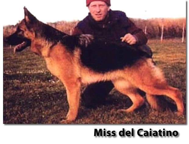 20130618-miss-del-caiatino-a